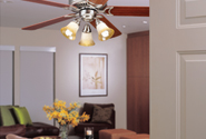 Ceiling Fan Glass